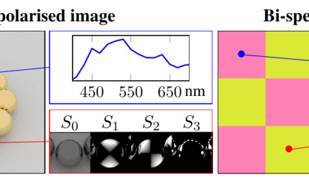 An OpenEXR Layout for Spectral Images